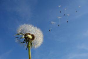 Νέες ευκαιρίες από Αέρα και Ήλιο! (του Σταμάτη Γαργαλιάνου)